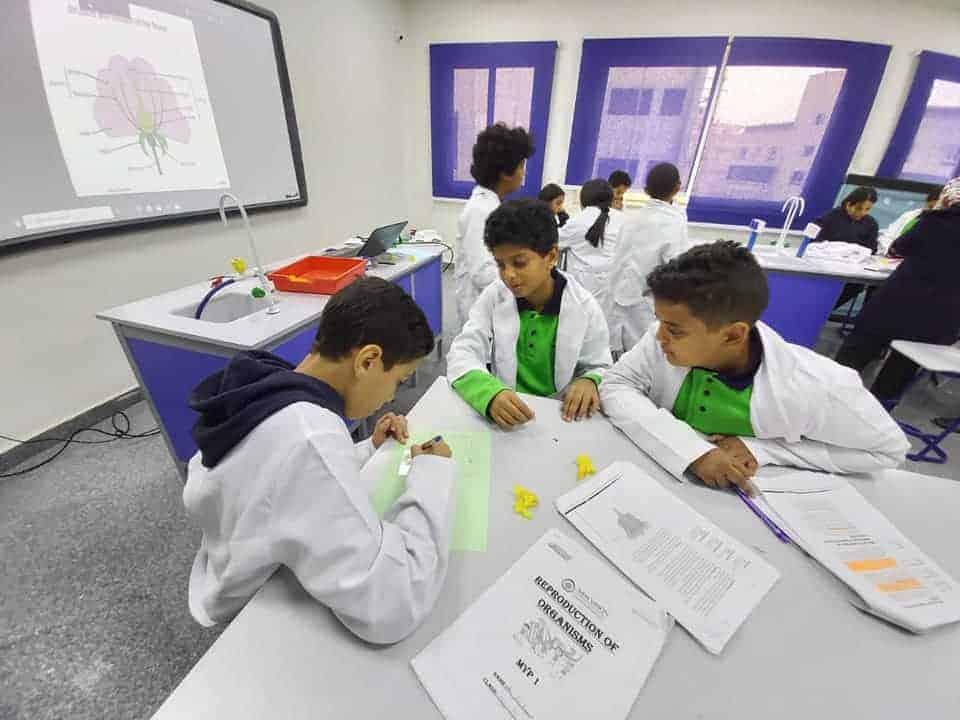 مدارس الرؤية الجديدة الدولية New Vision International Schools