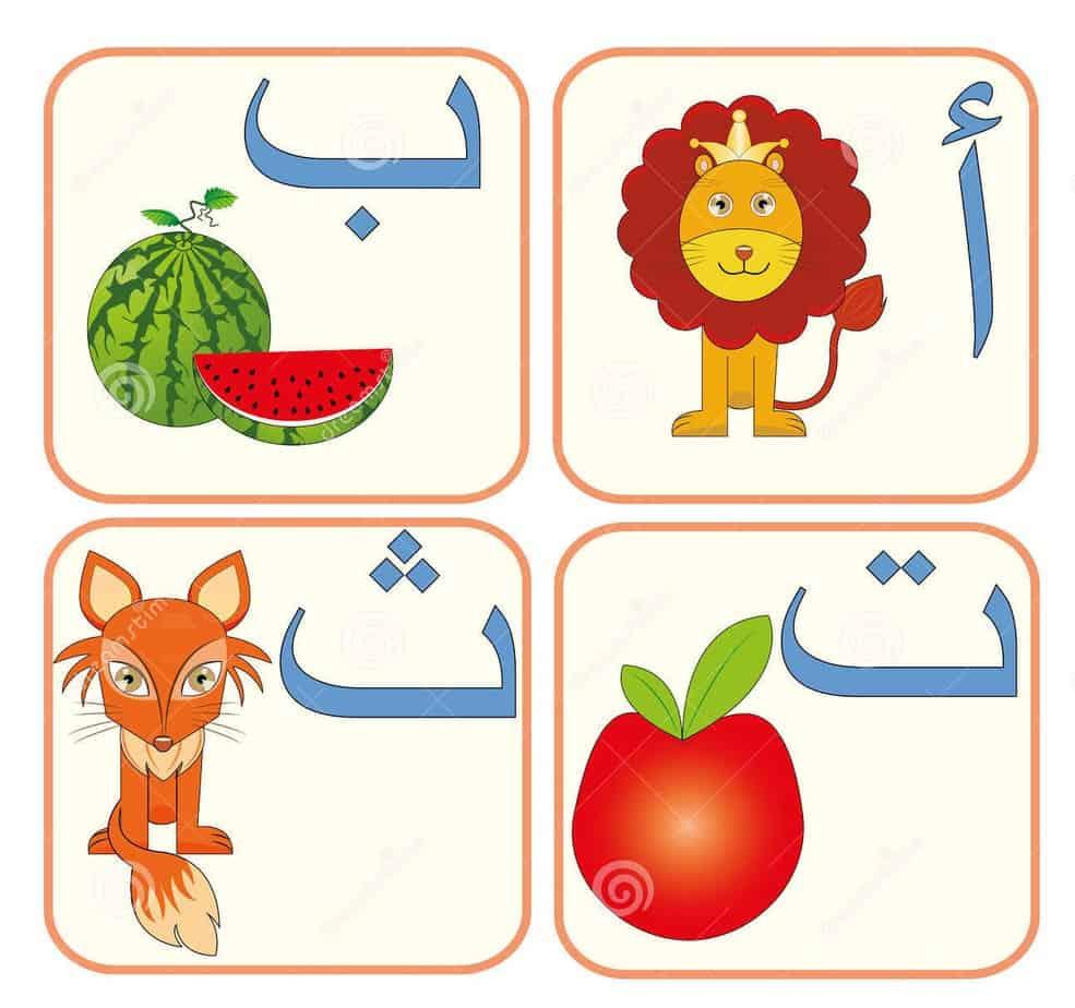 الحروف الابجدية العربية ورك شيت - Arabic Alphabet Worksheet