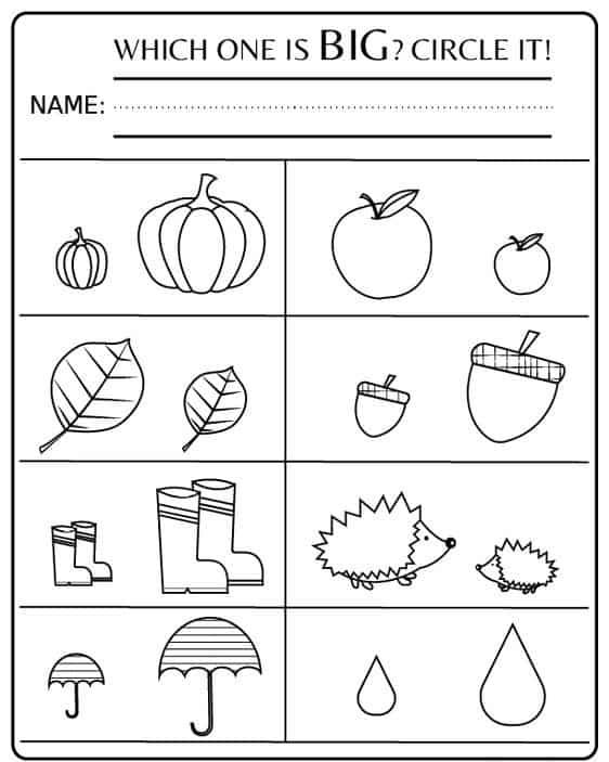 ماث ورك شيت - KG Math Worksheet