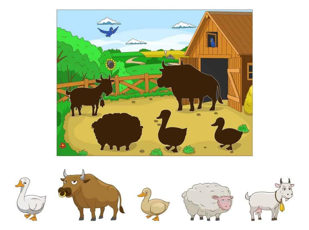 حروف و حيوانات ورك شيت - English Alphabet And Animals Worksheet